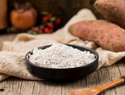 Farine de patate douce : bienfaits et recettes pour sportifs (ou pas) !